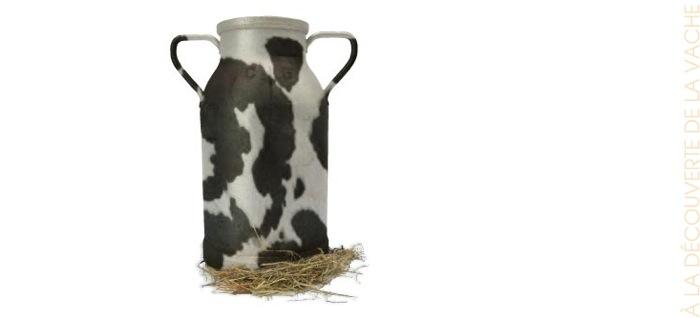 A la découverte de la vache