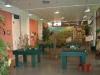 Vue de l'espace scénique du jardin avec les tables